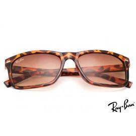 Ray Ban RB20251 Wayfarer Tortoise Sunglasses