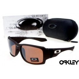 oakley big taco sunglasses in rootbeer and bronze polarized